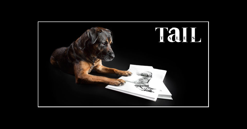 featured-tailtailesbook