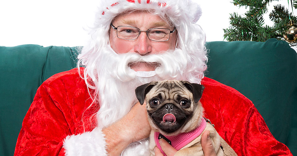 featured-santapaws