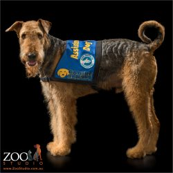 certified medical alert airedale