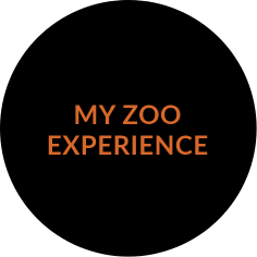 https://www.zoostudio.com.au/wp-content/uploads/2021/07/my-zoo-experience.png